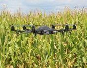 Los drones reducen costes a los granjeros en Florida