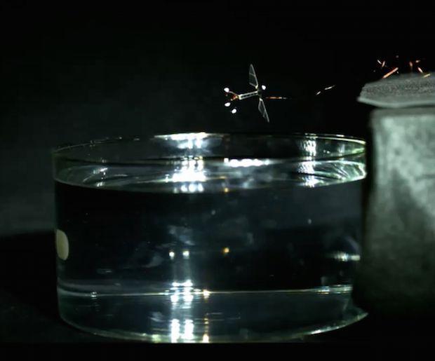 harvard-robo-bee-1