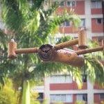 Bambudron y proyecto Ecodrones